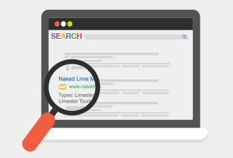 Online search results with structured snippets